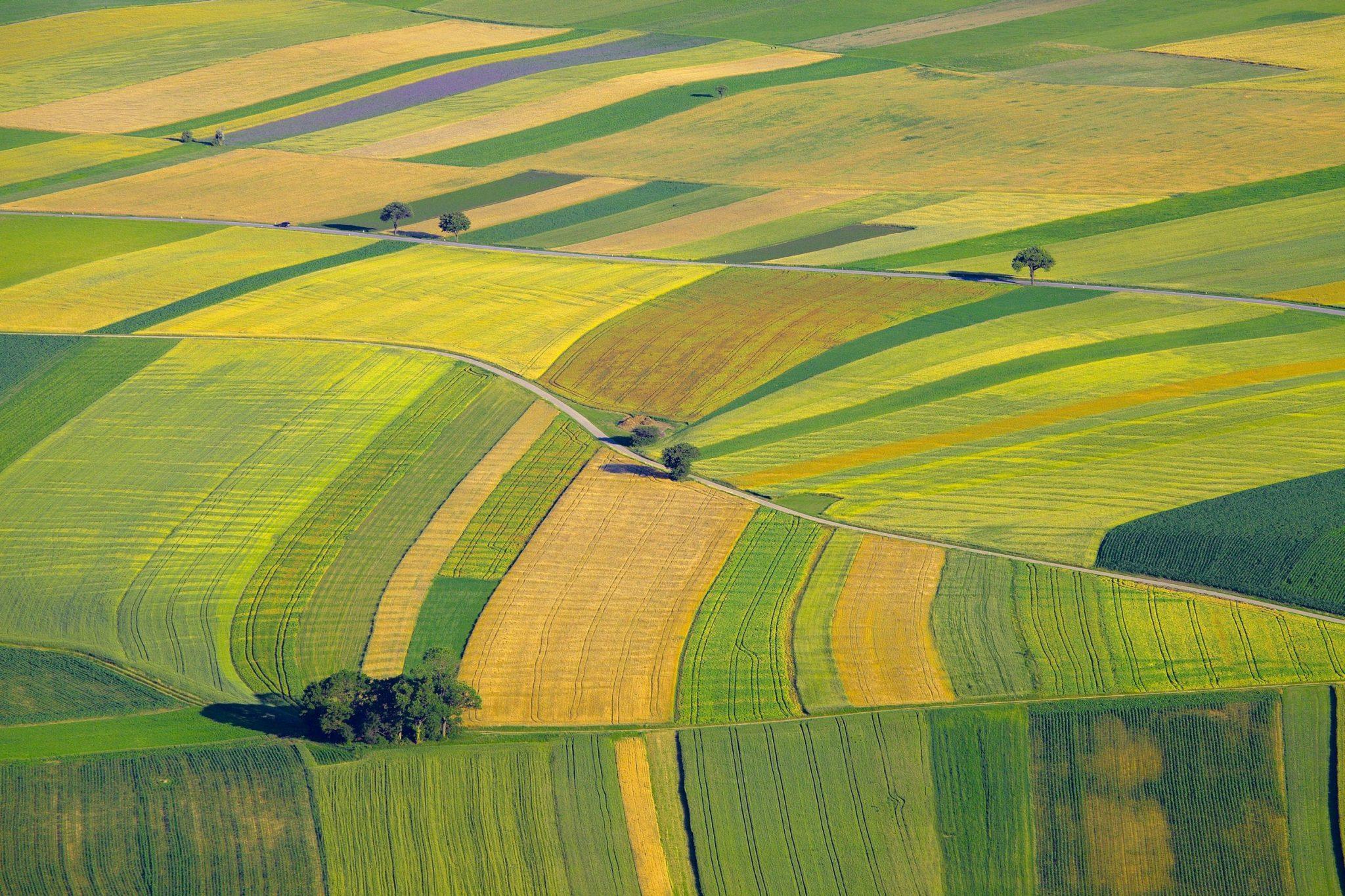 Kérhető-e felmentés vagy sem a zöldítésben?